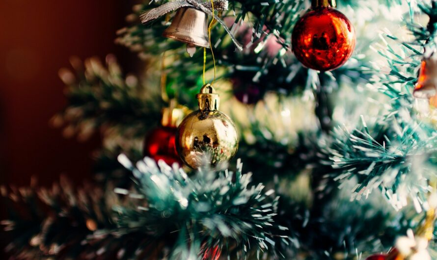 Der Weihnachtsbaum aus Cebu