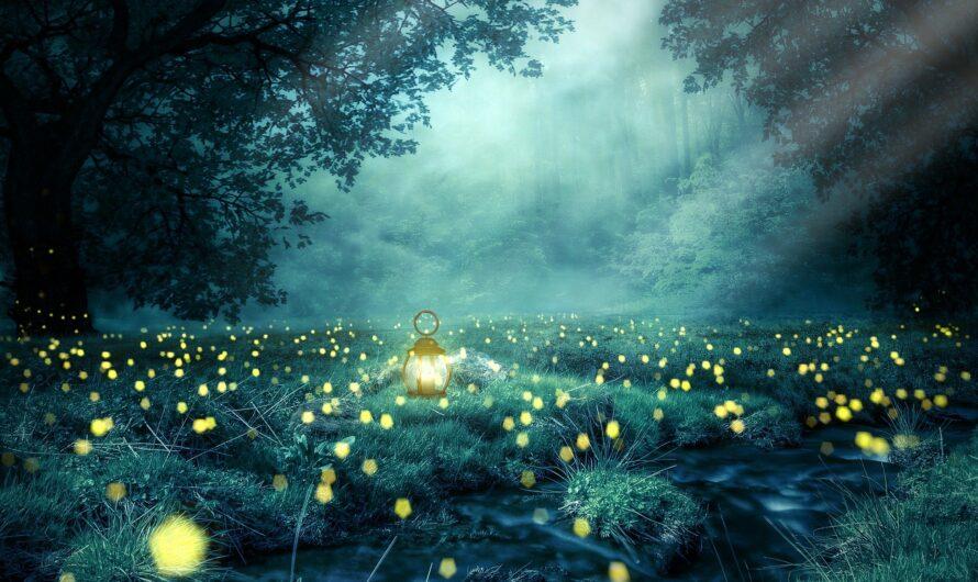 Das Lichtfest
